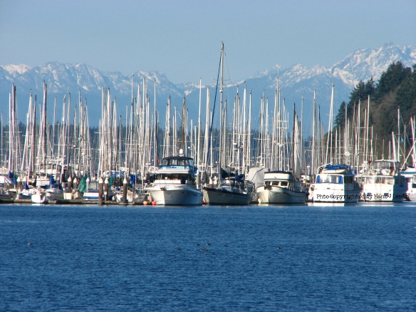 Puget Sound, the Olympics and sai boats