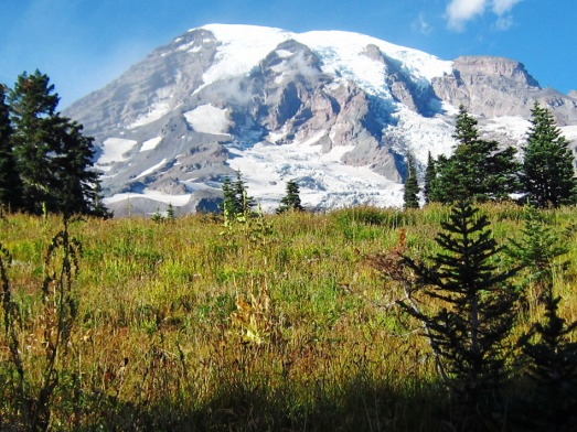 View from the walking path at Paradise on Mt.Rainier.