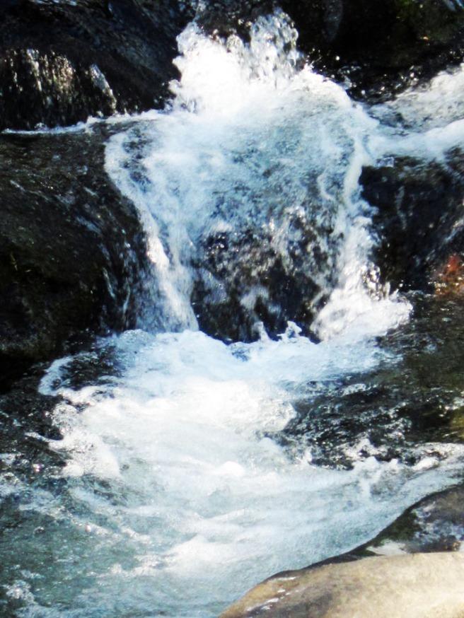 waterfall near the road on the way down Mt. Rainier.